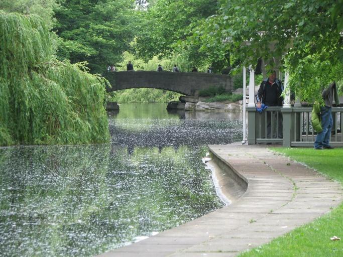 Park i Dublin